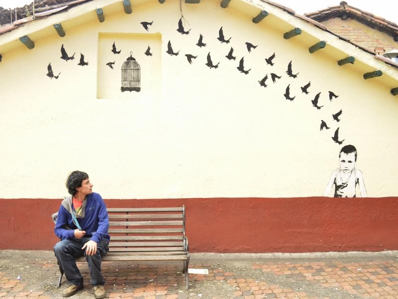 Bogota oiseaux